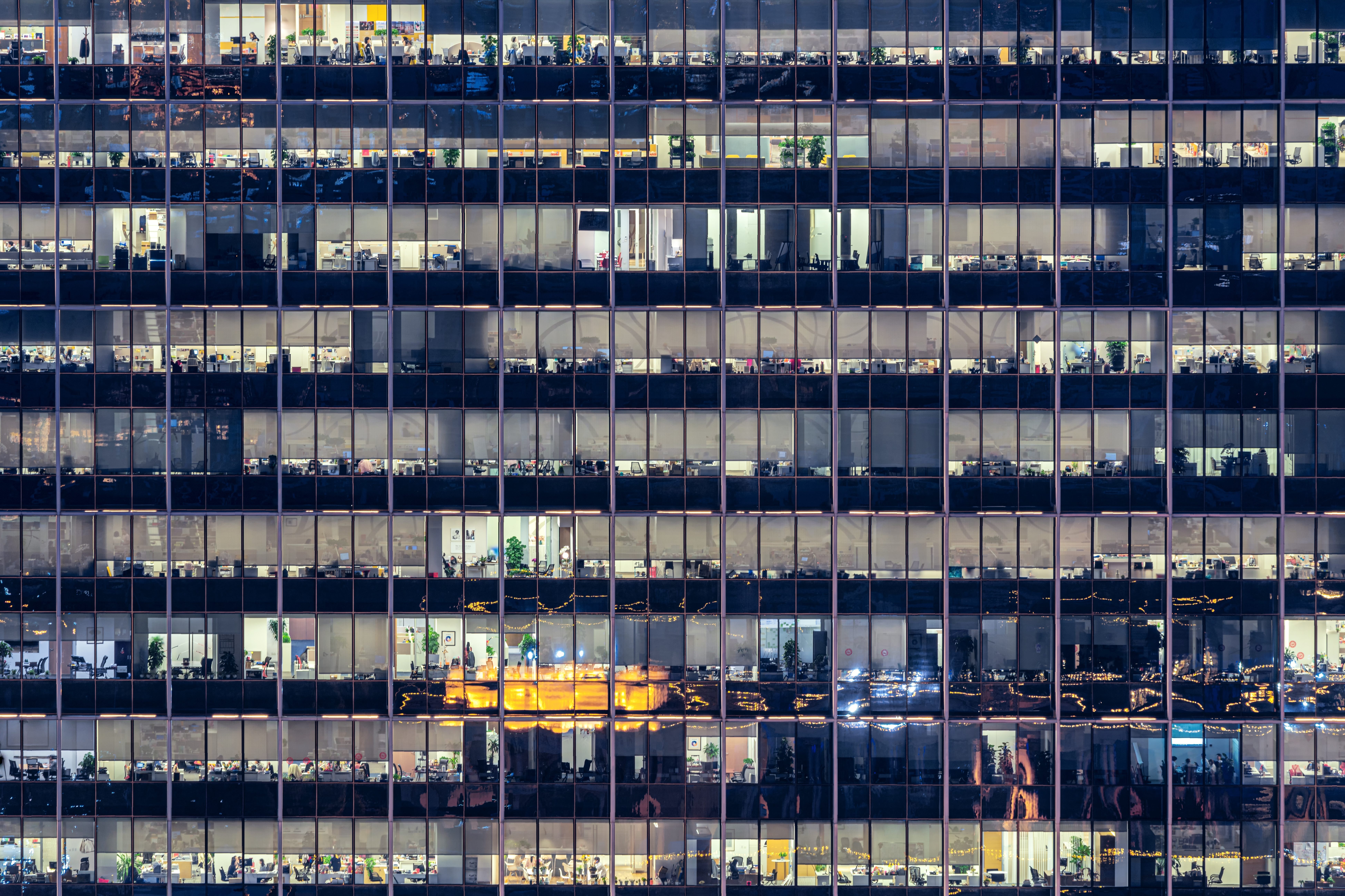 Office windows in the city